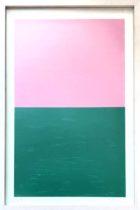 Berliner Serie  rosa - grün